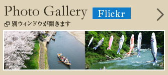Photo Gallery Flickr