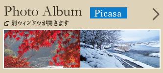 Photo Album Picasa