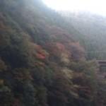 20101112155035.jpg