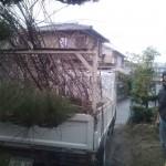 20101203141623.jpg