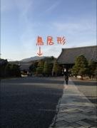20120815-104849.jpg