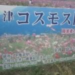 20101015122506.jpg