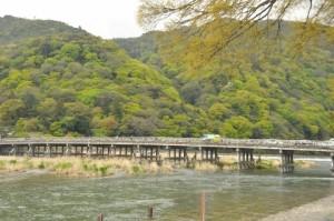 新緑の保津川&天龍寺 205 (480x319)